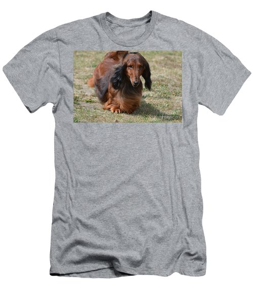 Adorable Long Haired Daschund Dog Men's T-Shirt (Slim Fit) by DejaVu Designs