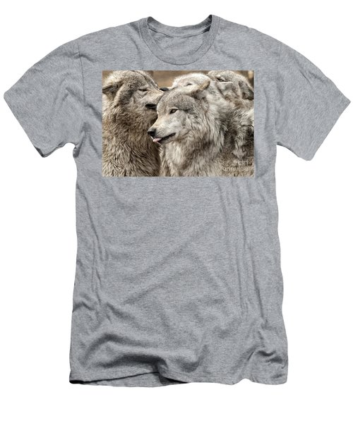 Adult Timber Wolf Men's T-Shirt (Athletic Fit)