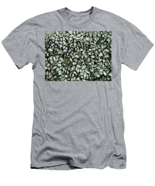 All The Shells Men's T-Shirt (Athletic Fit)