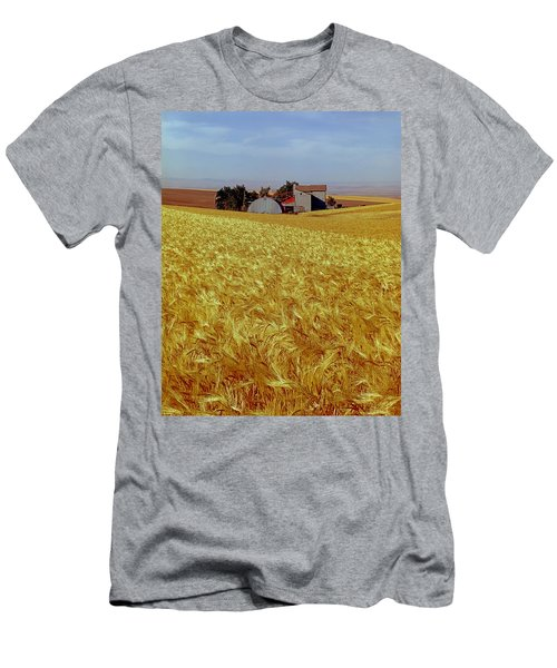 Amber Waves Of Grain - V Men's T-Shirt (Athletic Fit)