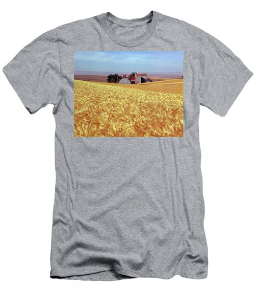 Amber Waves Of Grain Men's T-Shirt (Athletic Fit)