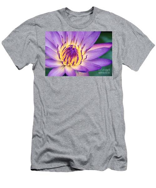 Ao Lani Heavenly Light Men's T-Shirt (Athletic Fit)