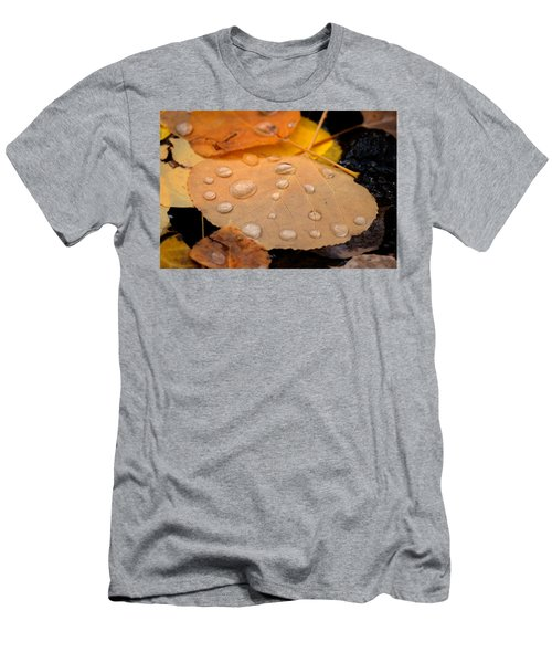 Aspen Leaf With Water Drops Men's T-Shirt (Athletic Fit)