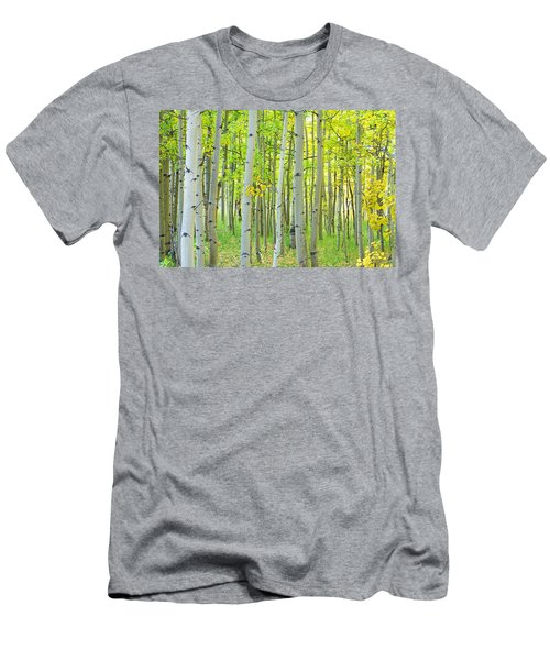 Aspen Tree Forest Autumn Time  Men's T-Shirt (Athletic Fit)