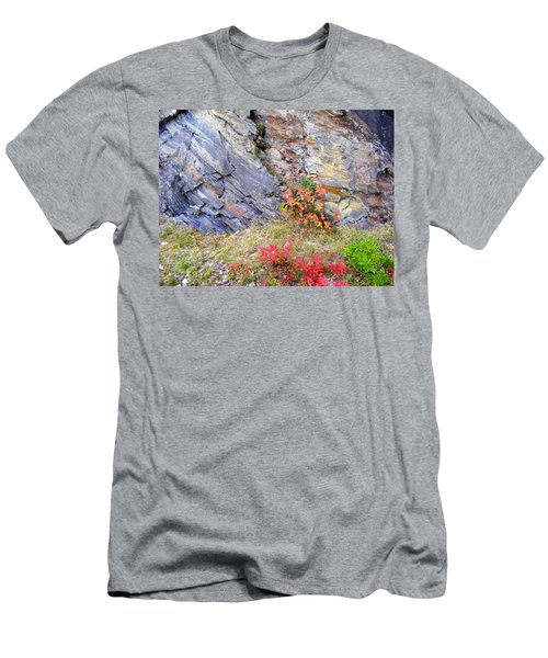 Autumn And Rocks Men's T-Shirt (Athletic Fit)