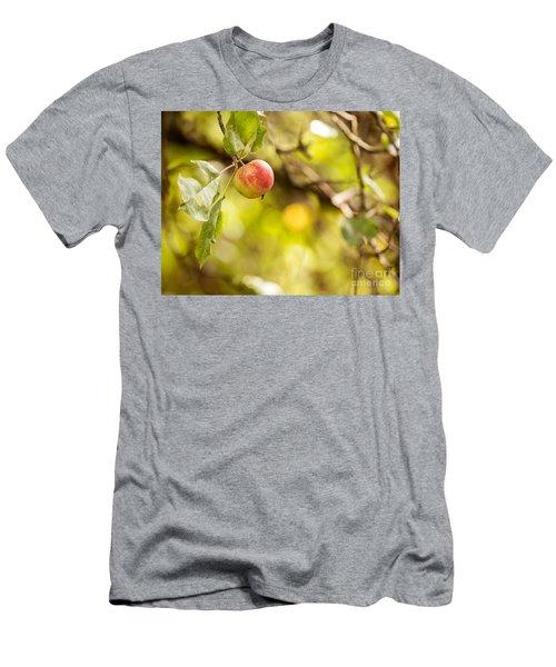 Autumn Apple Men's T-Shirt (Athletic Fit)