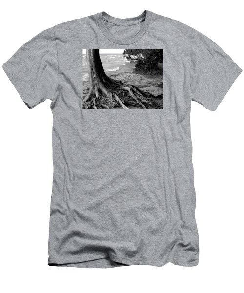 B And W Cedar Roots At Cave Point Men's T-Shirt (Slim Fit) by David T Wilkinson
