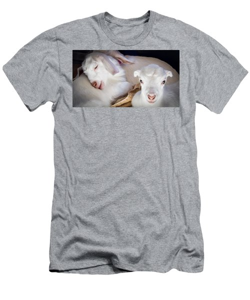 Baby Goats Napping Men's T-Shirt (Athletic Fit)