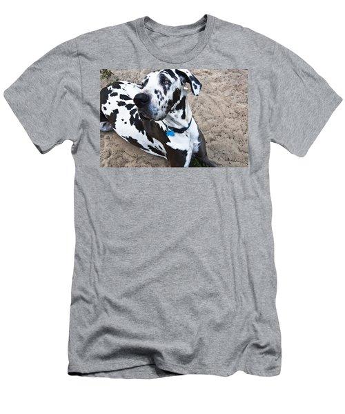Bacchus The Great Dane Men's T-Shirt (Athletic Fit)