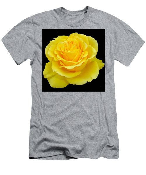 Beautiful Yellow Rose Flower On Black Background  Men's T-Shirt (Athletic Fit)