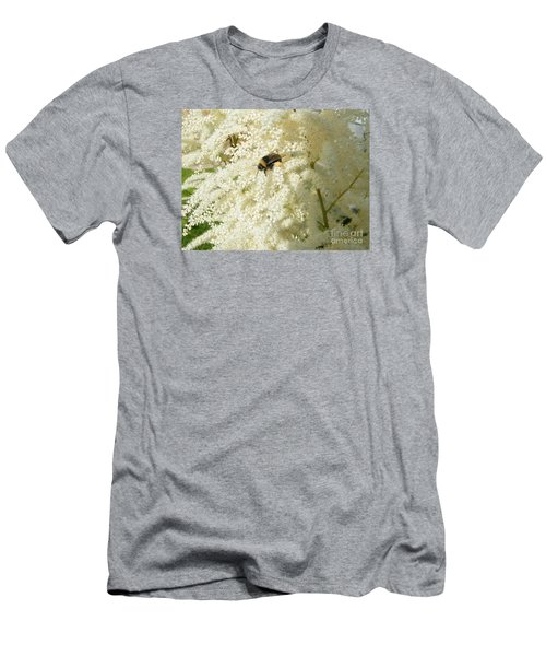 Bee Gathering Pollen Men's T-Shirt (Athletic Fit)