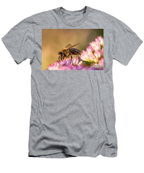 Men's T-Shirt (Athletic Fit) featuring the photograph Bee Sitting On Flower by John Wadleigh