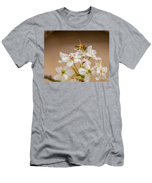 Bee Working The Bradford Pear 4 Men's T-Shirt (Athletic Fit)