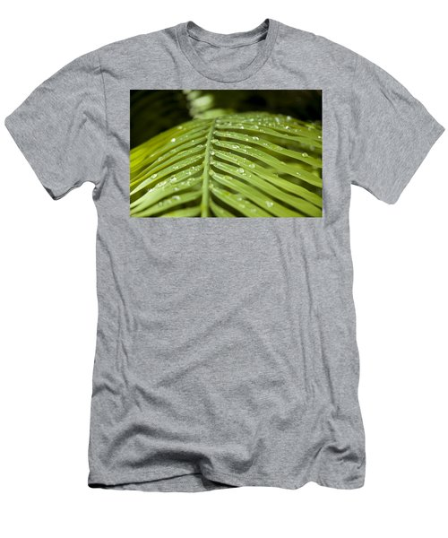 Men's T-Shirt (Athletic Fit) featuring the photograph Bending Ferns by Carolyn Marshall