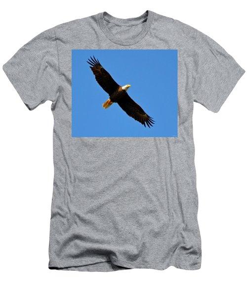 Best Bald Eagle On Blue Men's T-Shirt (Athletic Fit)