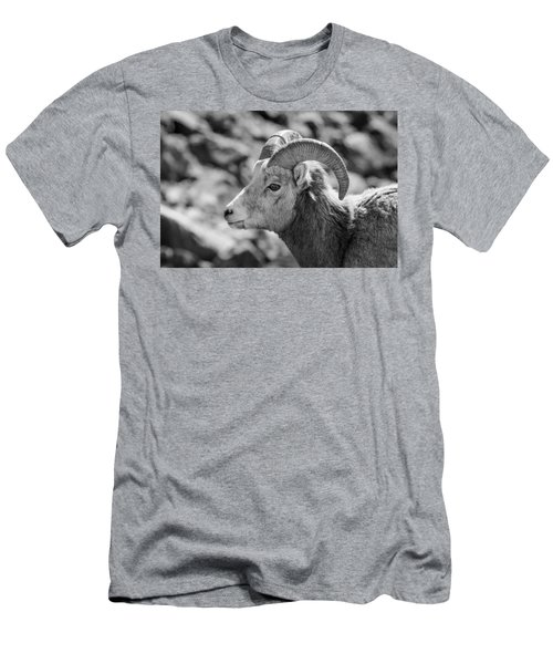 Big Horn Sheep Profile Men's T-Shirt (Athletic Fit)