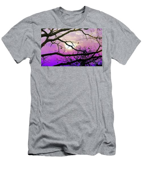 Birds Roosting For Night Men's T-Shirt (Athletic Fit)