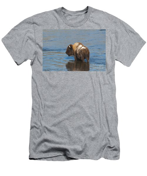 Bison Crossing River Men's T-Shirt (Athletic Fit)