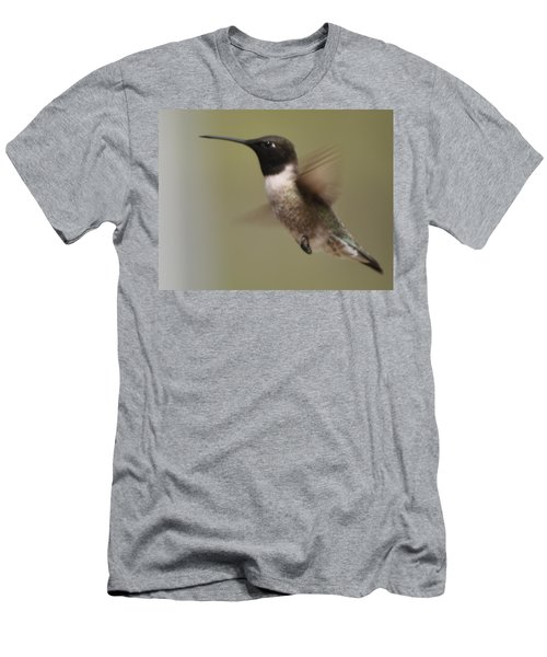 Black-chinned Hummingbird Men's T-Shirt (Athletic Fit)