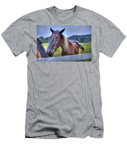 Black Horse At A Fence Men's T-Shirt (Athletic Fit)