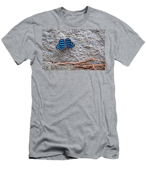 Blue Butterfly Myscelia Ethusa Art Prints Men's T-Shirt (Athletic Fit)