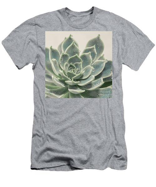 Blue Green Succulent Men's T-Shirt (Athletic Fit)