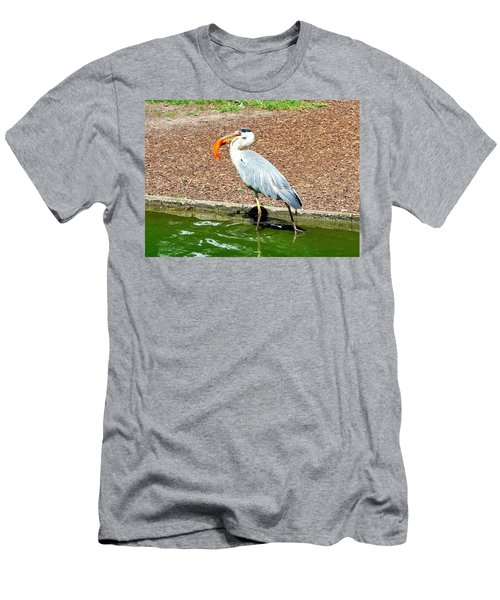 Men's T-Shirt (Slim Fit) featuring the photograph Blue Heron Feeding by Joe  Ng