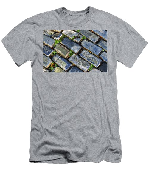 Blue Stone  Men's T-Shirt (Athletic Fit)