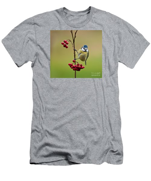 Men's T-Shirt (Slim Fit) featuring the photograph Blue Tit With Hawthorn Berries by Liz Leyden