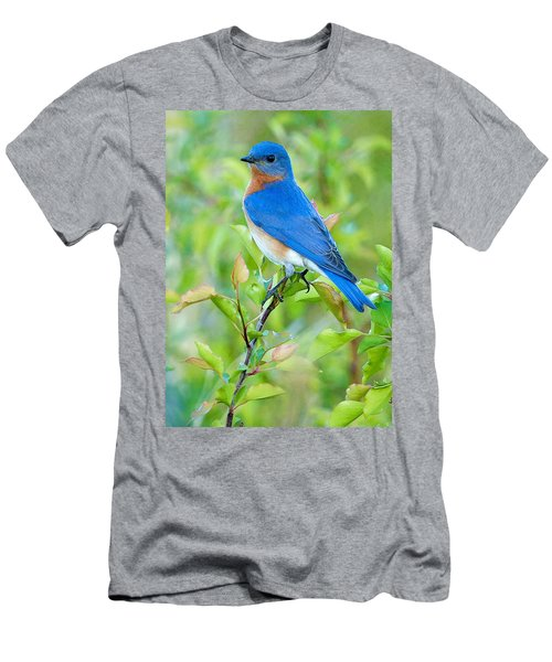 Bluebird Joy Men's T-Shirt (Athletic Fit)