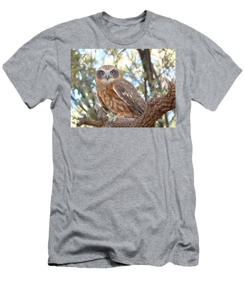 Boobook Owl Men's T-Shirt (Athletic Fit)