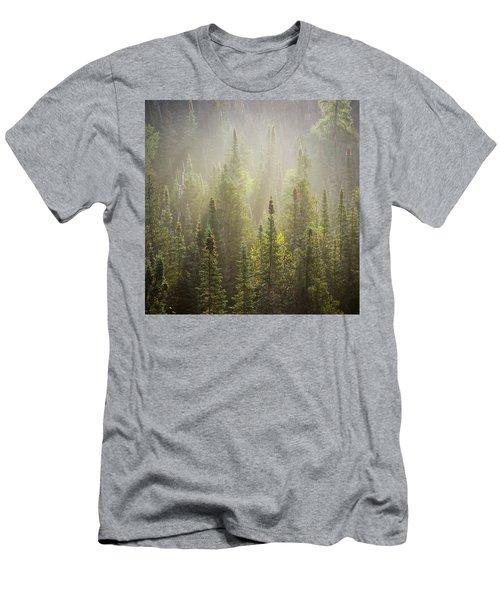 Boreal Morning Men's T-Shirt (Athletic Fit)