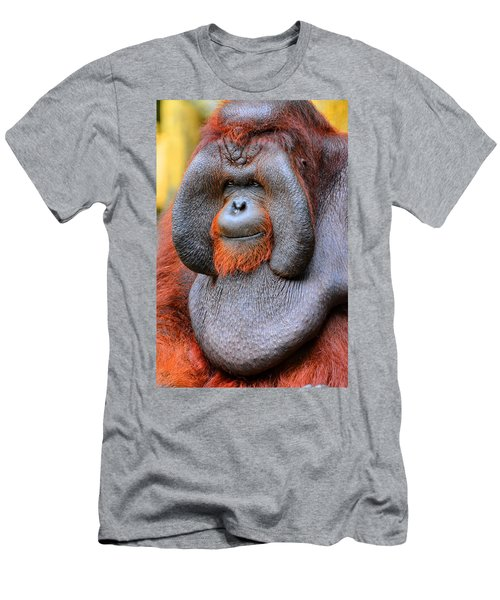 Bornean Orangutan Iv Men's T-Shirt (Athletic Fit)