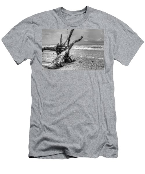 Botany Bay Men's T-Shirt (Athletic Fit)