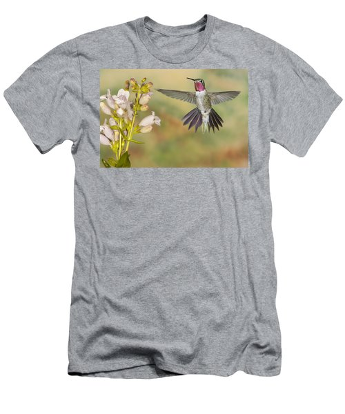 Broad Tailed Hummingbird 2 Men's T-Shirt (Athletic Fit)