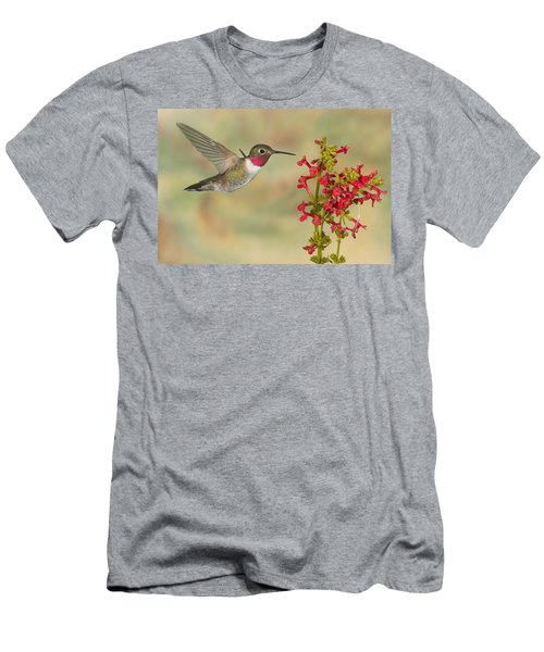 Broad-tailed Hummingbird 5 Men's T-Shirt (Athletic Fit)