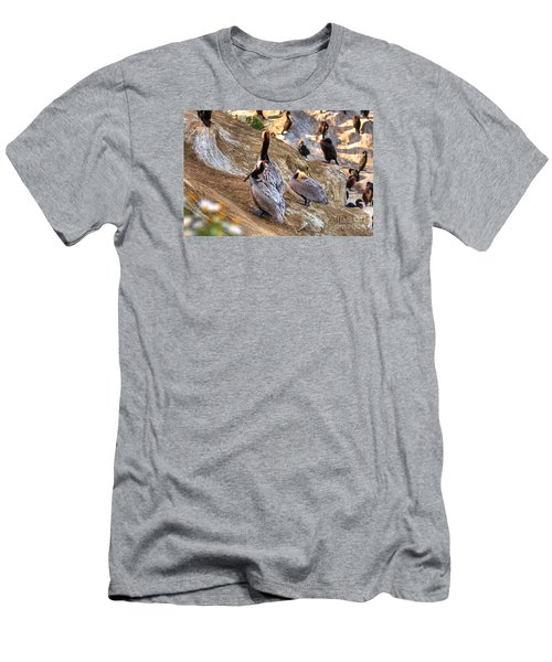Brown Pelicans At Rest Men's T-Shirt (Slim Fit) by Jim Carrell