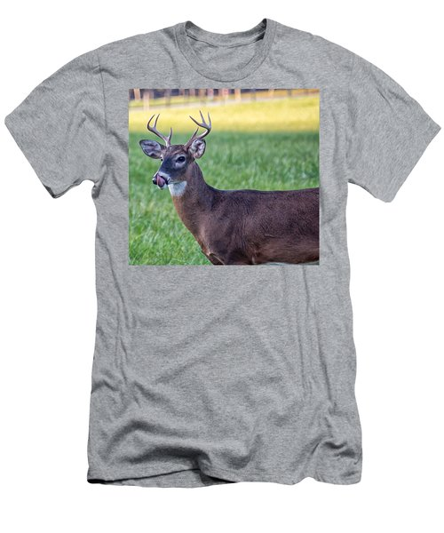 Buck Licking His Chops At Cades Cove Inside Of The Great Smoky Mountains National Park Men's T-Shirt (Athletic Fit)