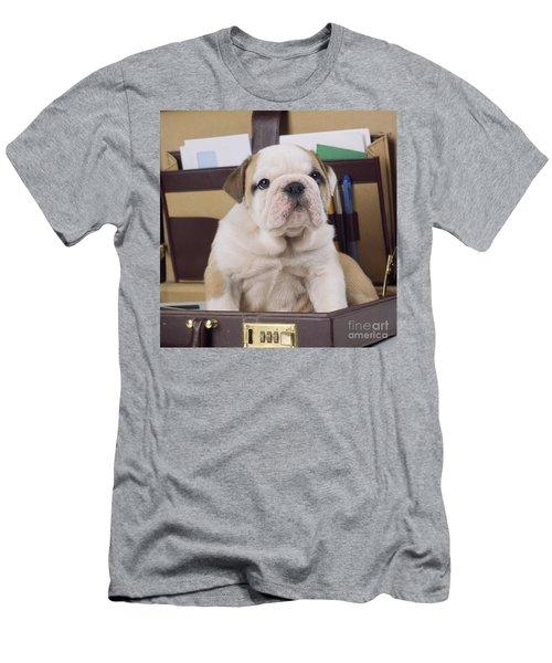 Bulldog Puppy Men's T-Shirt (Athletic Fit)
