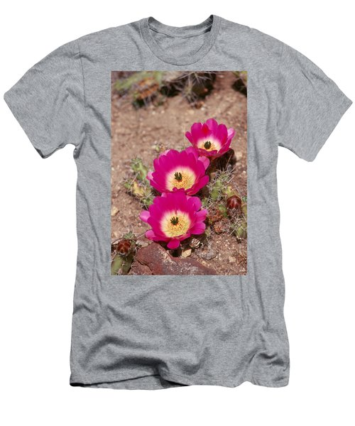 Cactus 1 Men's T-Shirt (Slim Fit) by Andy Shomock