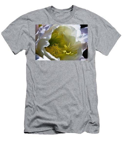 Cactus Interior Men's T-Shirt (Athletic Fit)