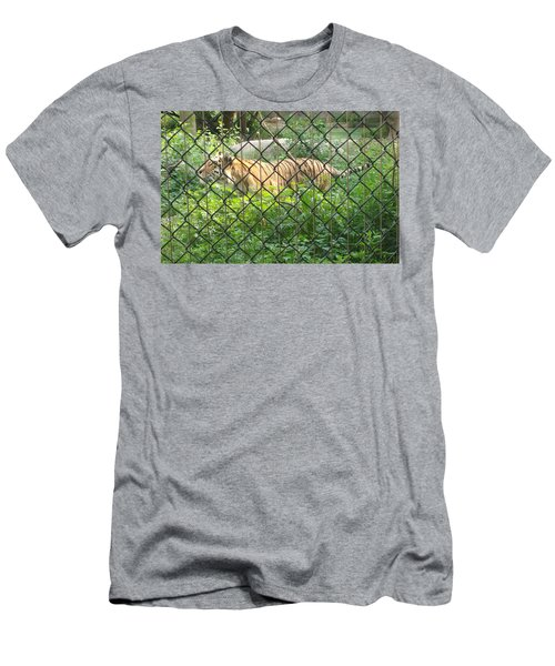 Men's T-Shirt (Slim Fit) featuring the photograph Caged by Fortunate Findings Shirley Dickerson