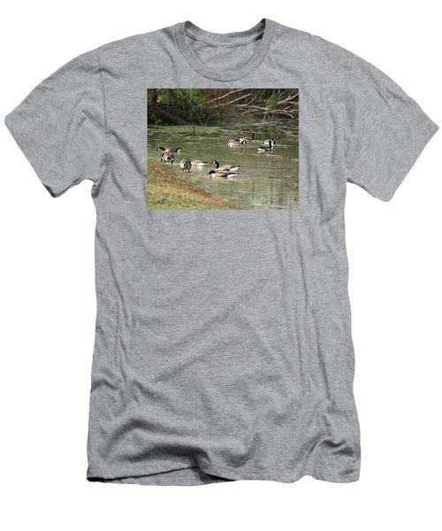 Canadian Geese Feeding In Backwaters Men's T-Shirt (Slim Fit) by William Tanneberger