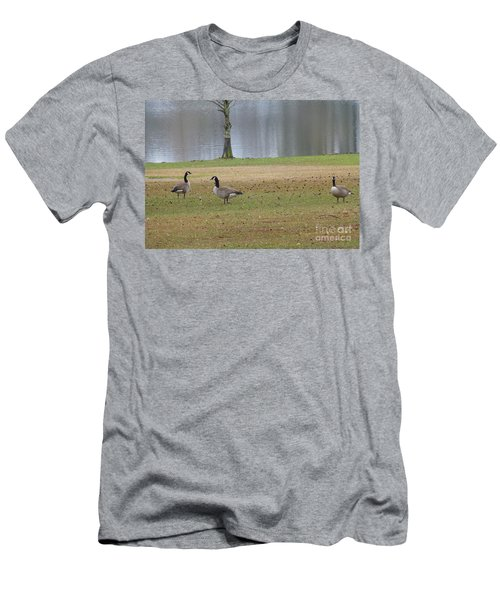 Canadian Geese Tourists Men's T-Shirt (Athletic Fit)