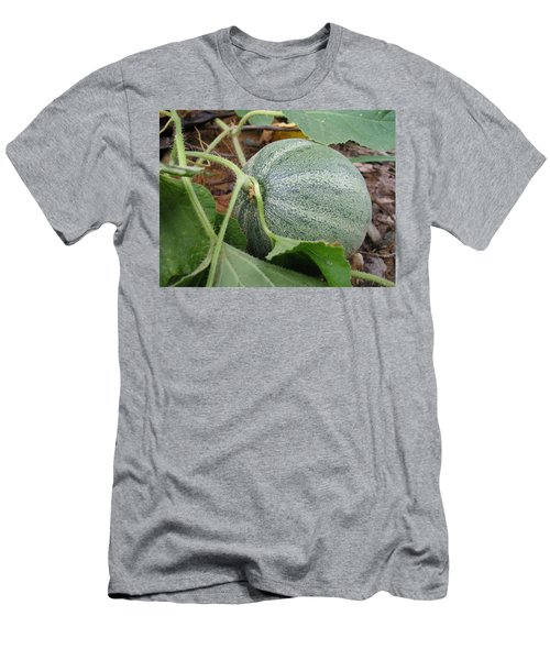 Cantaloupe  Men's T-Shirt (Slim Fit) by Jennifer Wheatley Wolf