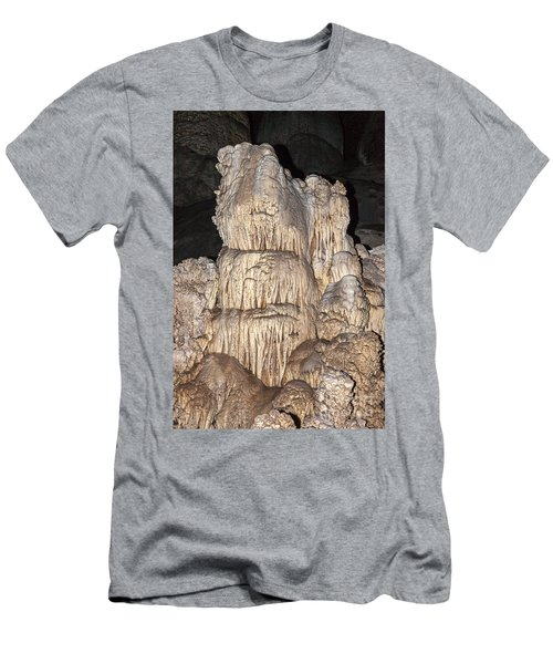 Carlsbad Caverns National Park Men's T-Shirt (Athletic Fit)