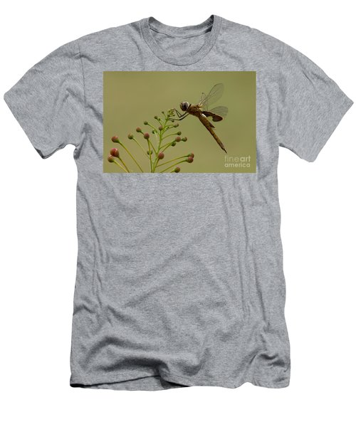 Carolina Saddlebags Men's T-Shirt (Athletic Fit)