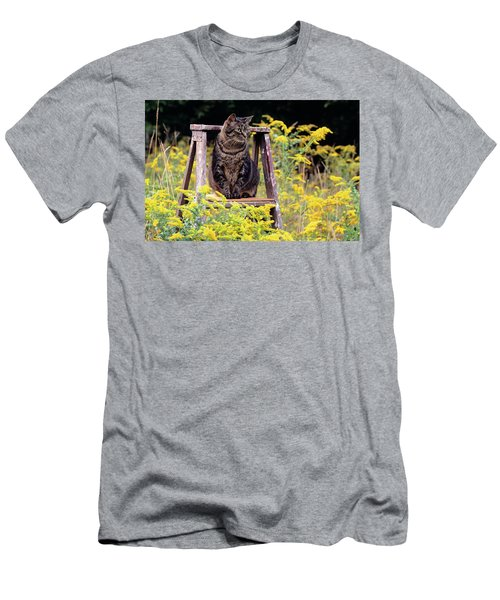 Cat On Ladder In Field Of Goldenrods Men's T-Shirt (Athletic Fit)