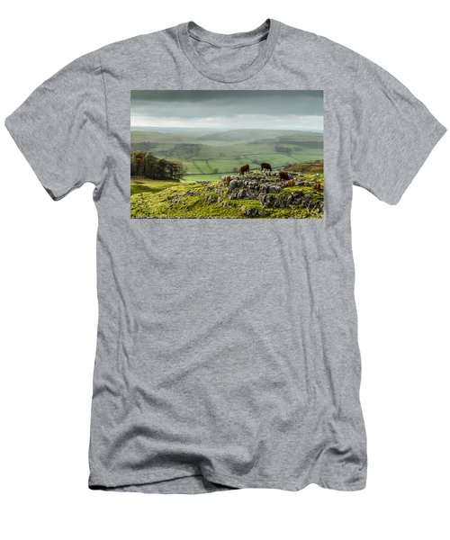 Cattle In The Yorkshire Dales Men's T-Shirt (Athletic Fit)