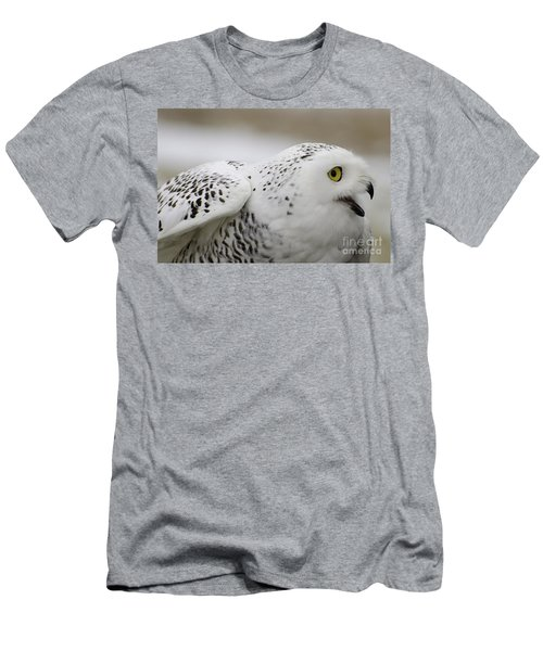 Cheeky Snow Owl Men's T-Shirt (Athletic Fit)